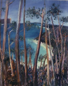 Jervis Bay Through the Gums Across to Perpendicular 1985