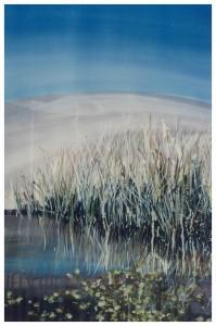 Mirror Pond 1986